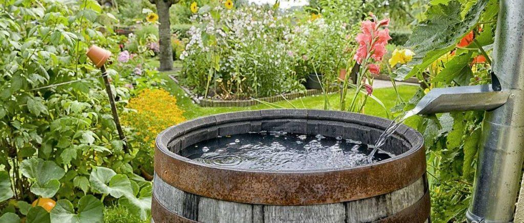 Tonneau récupérant l'eau de pluie